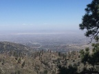 And I Would Climb 5000 Feet